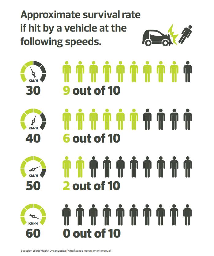 Vision Zero - Surival Rate Graphic